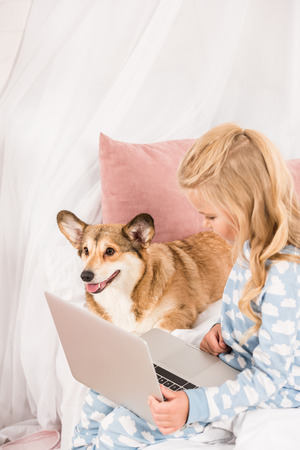 child sitting in bed with adorable corgi dog and using laptop at home