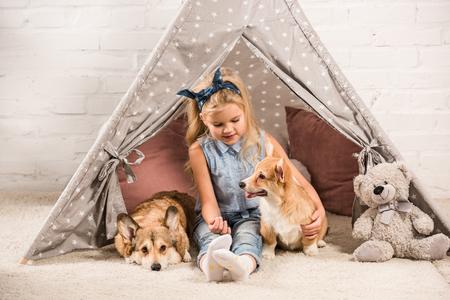 entzückendes Kind, das zu Hause mit walisischen Corgihunden im Wigwam sitzt Standard-Bild