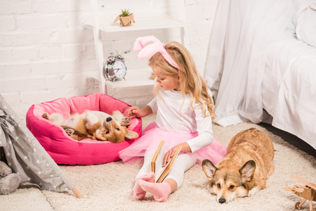 child with bunny ears headband and book stroking welsh corgi dogs at home