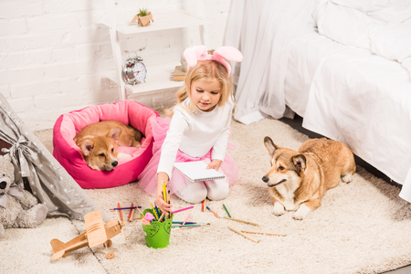 child in bunny ears headband sitting with welsh corgi dogs at home and drawing with coloring pencils Foto de archivo - 117981143