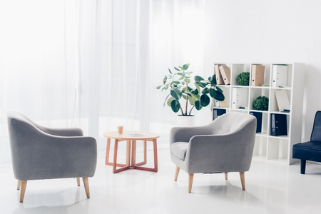 interior of light modern business office with two armchairs, shelves, plants and small wooden table on tulle background Standard-Bild - 117771898