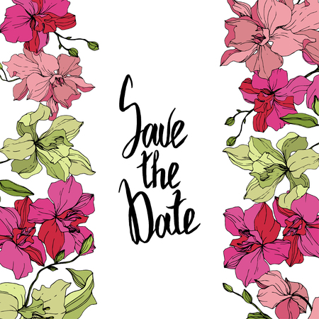 Vector Orchid. Floral botanical flower. Pink and yellow engraved ink art. Floral border. Save the Date handwriting monogram calligraphy. Illustration