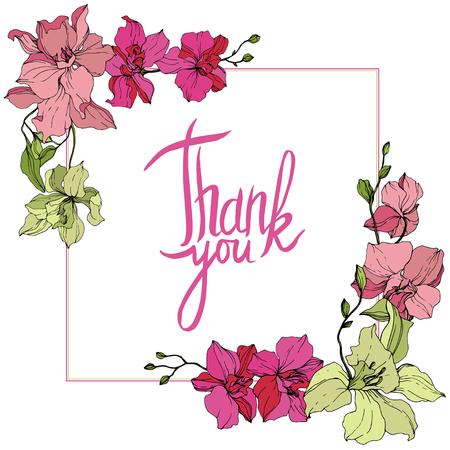 Vektor-Orchidee. Botanische Blumenblume. Rosa und gelbe gravierte Tinte Art.-Nr. Rahmen quadratisch. Danke Handschrift Monogramm Kalligraphie.