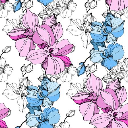 Vector Orquídea rosa y azul. Flor botánica floral. Flores silvestres de hoja de primavera salvaje aislado. Arte de tinta grabada. Patrón de fondo transparente. Textura de impresión de papel tapiz de tela. Ilustración de vector