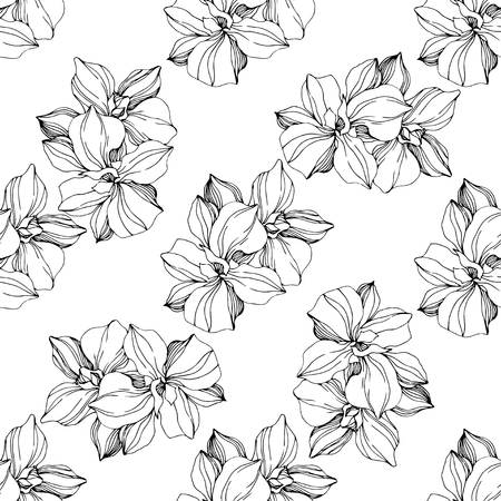 Vector Orchid floral botanical flower. Wild spring leaf wildflower isolated. Black and white ngraved ink art. Seamless background pattern. Fabric wallpaper print texture.