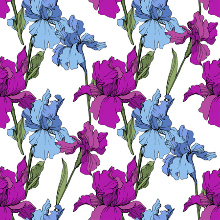 Vector Purple, yellow and blue iris. Floral botanical flower. Wild spring leaf wildflower isolated. Engraved ink art. Seamless background pattern. Fabric wallpaper print texture. Vettoriali