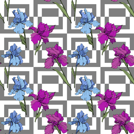 Vector Purple, yellow and blue iris. Floral botanical flower. Wild spring leaf wildflower isolated. Engraved ink art. Seamless background pattern. Fabric wallpaper print texture. 일러스트