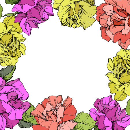 Vector Rose floral wreath. Floral botanical flower. Purple, yellow and coral engraved ink art on white background. 向量圖像