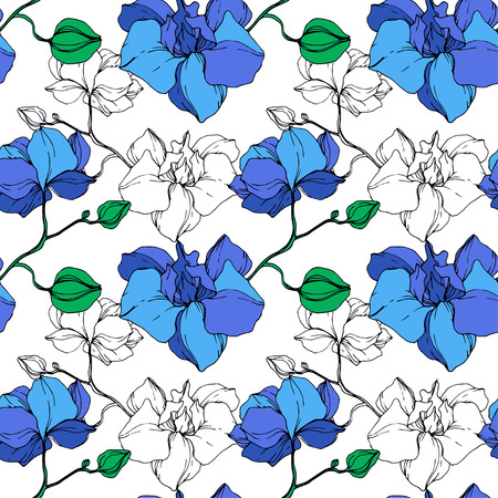 Vector Blue Orchid. Floral botanical flower. Engraved ink art. Seamless background pattern. Fabric wallpaper print texture.
