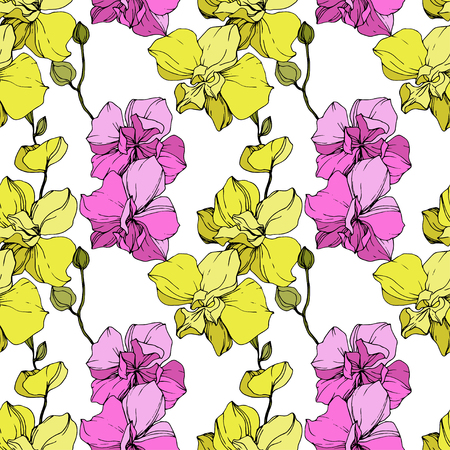 Vector Yellow and pink Orchid. Floral botanical flower. Engraved ink art. Seamless background pattern. Fabric wallpaper print texture.