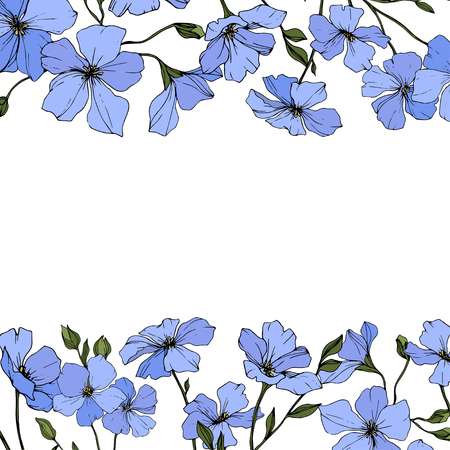 Vector. Blue flax. Floral botanical flower with green leaves. Engraved ink art. Floral flower border design.
