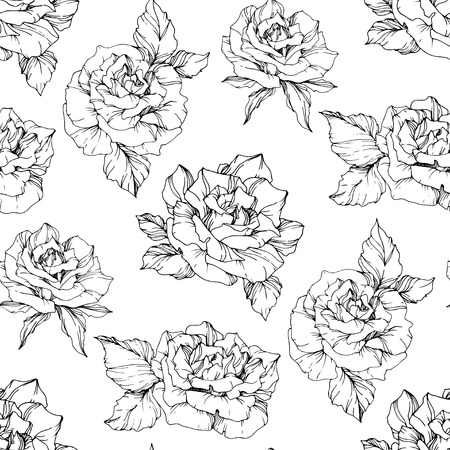 Vector Rose. Floral botanical flower. Black and white engraved ink art. Seamless background pattern. Fabric wallpaper print texture on white background.