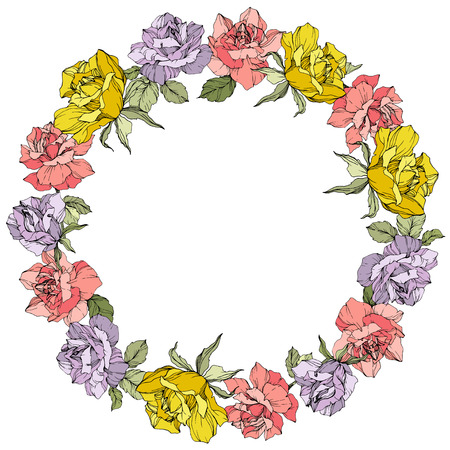 Vector Rose floral wreath on white background. Floral botanical flower. Yellow, purple and pink engraved ink art. Stock Vector - 125017468
