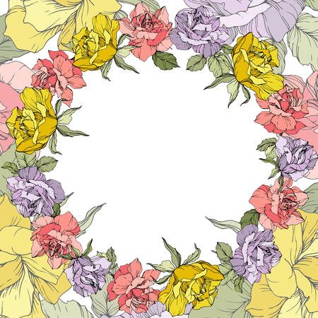 Vector Rose floral wreath on white background. Floral botanical flower. Yellow, purple and pink engraved ink art. Illustration