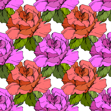 Vector Coral and purple rose. Floral botanical flower. Engraved ink art. Seamless background pattern. Fabric wallpaper print texture on black background. Illustration