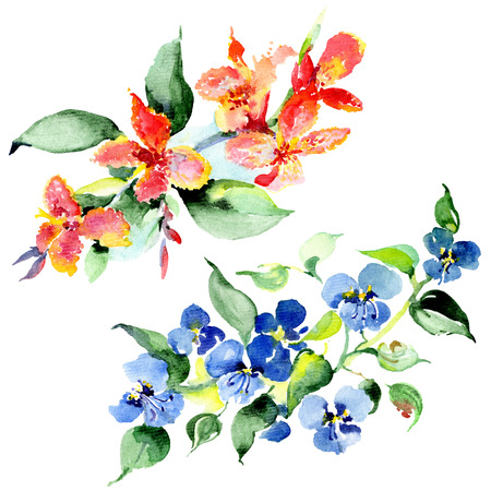 Bouquet floral botanical flowers. Wild spring leaf wildflower isolated. Watercolor background illustration set. Watercolour drawing fashion aquarelle isolated. Isolated bouquet illustration element. Stock Illustration - 117436218
