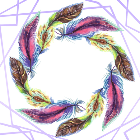 Colorful feathers. Watercolor bird feather from wing isolated. Aquarelle feather for background, texture, wrapper pattern, frame or border. Frame border ornament square. 写真素材