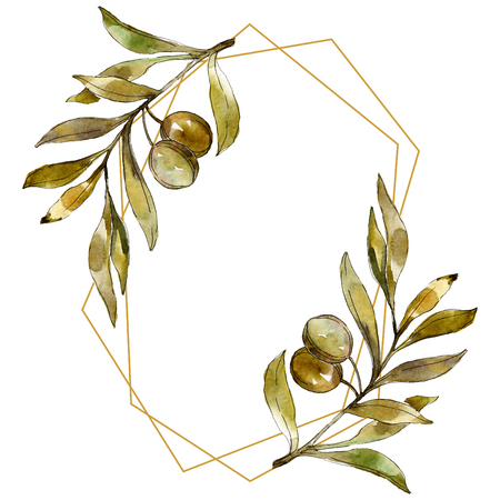 Green olives watercolor background illustration set. Watercolour drawing fashion aquarelle isolated. Green leaf. Leaf plant botanical garden floral foliage. Frame border ornament square. Banco de Imagens