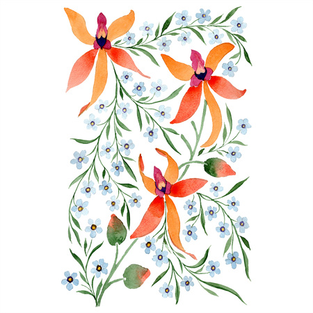 Blue ahd orange floral botanical flower. Watercolour drawing fashion aquarelle isolated. Standard-Bild - 117444089