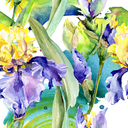 Purple yellow iris. Floral botanical flower. Wild spring leaf wildflower isolated. Watercolor background illustration set. Watercolour drawing fashion aquarelle isolated. Фото со стока