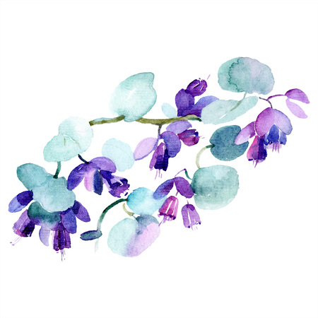 Bouquet floral botanical flower. Wild spring leaf wildflower isolated. Watercolor background illustration set. Watercolour drawing fashion aquarelle isolated. Isolated bouquet illustration element.