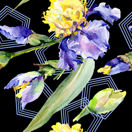 Purple yellow iris. Floral botanical flower. Wild spring leaf wildflower isolated. Watercolor background illustration set. Watercolour drawing fashion aquarelle isolated. 스톡 콘텐츠