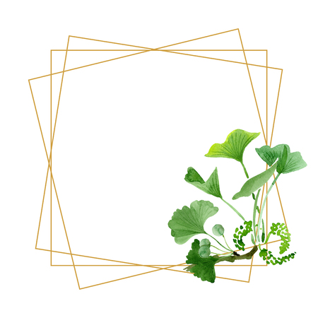 Green ginkgo biloba. Floral botanical flower. Wild spring leaf wildflower isolated. Watercolor background illustration set. Watercolour drawing fashion aquarelle isolated. Frame border ornament square Banco de Imagens