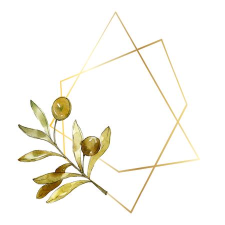 Green olives watercolor background illustration set. Watercolour drawing fashion aquarelle isolated. Green leaf. Leaf plant botanical garden floral foliage. Frame border ornament square. Stock fotó