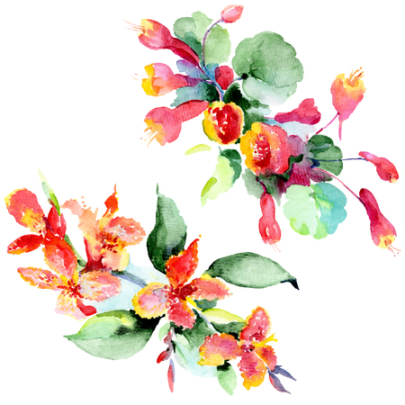 Bouquet floral botanical flowers. Wild spring leaf wildflower isolated. Watercolor background illustration set. Watercolour drawing fashion aquarelle isolated. Isolated bouquet illustration element. Stock Illustration - 117464026