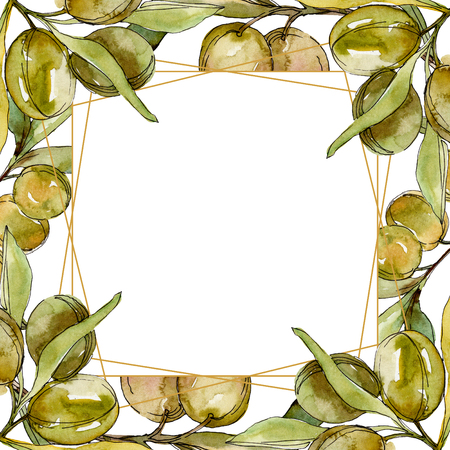 Green olives watercolor background illustration set. Watercolour drawing fashion aquarelle isolated. Green leaf. Leaf plant botanical garden floral foliage. Frame border ornament square. Stockfoto