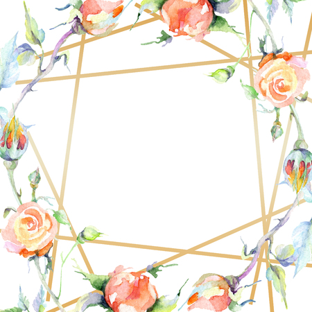 Orange rose. Floral botanical flower. Wild spring leaf wildflower isolated. Watercolor background illustration set. Watercolour drawing fashion aquarelle isolated. Frame border ornament square.
