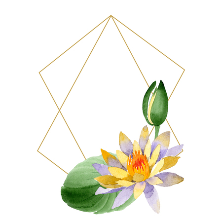 Yellow lotus. Floral botanical flower. Wild spring leaf wildflower isolated. Watercolor background illustration set. Watercolour drawing fashion aquarelle isolated. Frame border ornament square.