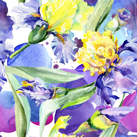 Purple yellow iris. Floral botanical flower. Wild spring leaf wildflower isolated. Watercolor background illustration set. Watercolour drawing fashion aquarelle isolated. 写真素材