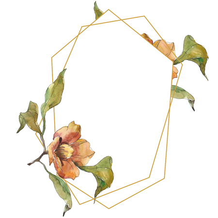 Orange camelia. Floral botanical flower. Wild spring leaf wildflower isolated. Watercolor background illustration set. Watercolour drawing fashion aquarelle isolated. Frame border ornament square.