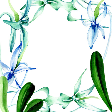 Blue Rare orchid. Floral botanical flower. Wild spring leaf wildflower isolated. Watercolor background illustration set. Watercolour drawing fashion aquarelle isolated. Frame border ornament square. Reklamní fotografie - 117497909