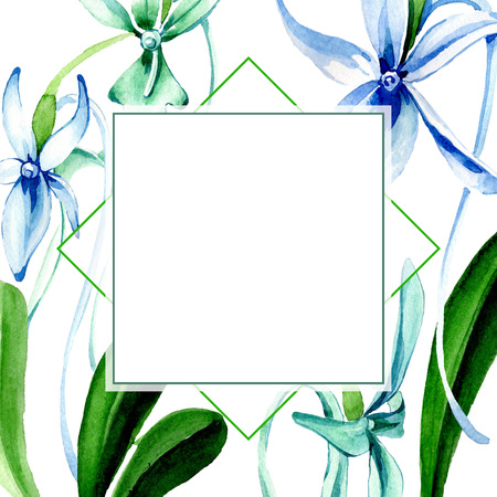 Blue Rare orchid. Floral botanical flower. Wild spring leaf wildflower isolated. Watercolor background illustration set. Watercolour drawing fashion aquarelle isolated. Frame border ornament square.