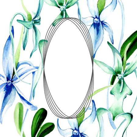 Blue Rare orchid. Floral botanical flower. Wild spring leaf wildflower isolated. Watercolor background illustration set. Watercolour drawing fashion aquarelle isolated. Frame border ornament square. Reklamní fotografie - 117498147