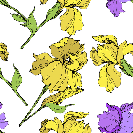Vector Purple and yellow iris floral botanical flower. Wild spring leaf wildflower isolated. Engraved ink art. Seamless background pattern. Fabric wallpaper print texture.