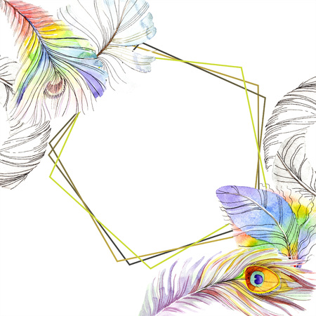 Colorful bird feather from wing isolated. Aquarelle feather for frame or border. Watercolor background illustration set. Watercolour drawing fashion aquarelle. Frame border ornament square. 写真素材