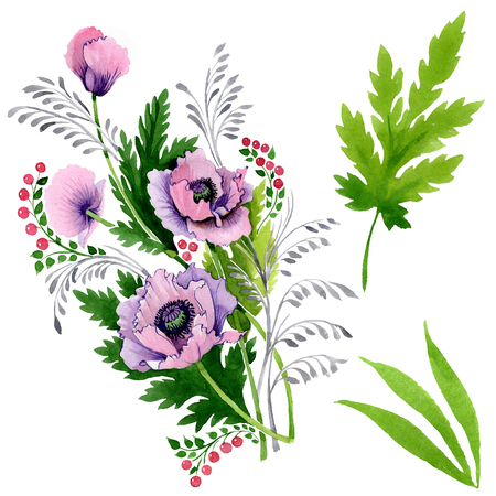 Pink purple poppy floral botanical flower. Wild spring leaf wildflower isolated. Watercolor background illustration set. Watercolour drawing fashion aquarelle. Isolated poppy illustration element.