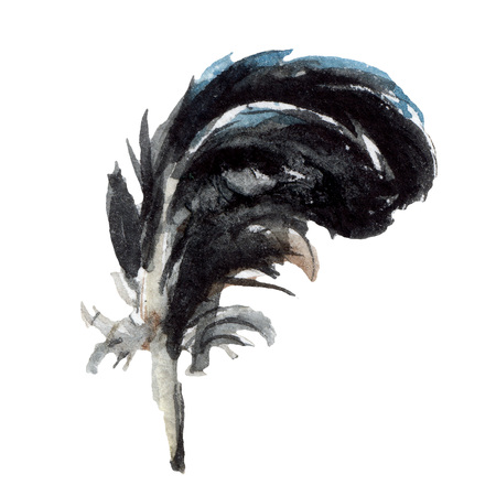 Blue black bird feather from wing isolated. Watercolor background illustration set. Watercolour drawing fashion aquarelle. Isolated feathers illustration element. 写真素材