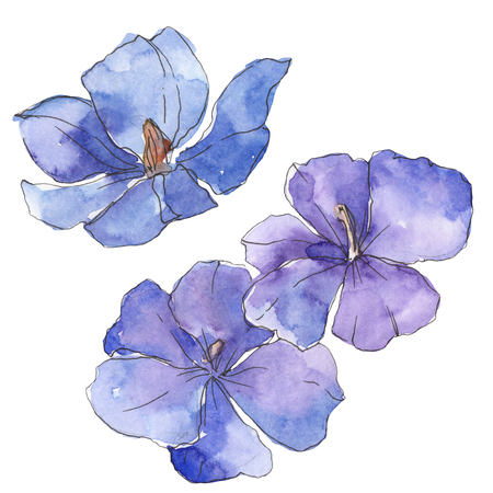 Blue purple flax. Floral botanical flower. Wild spring leaf wildflower isolated. Watercolor background illustration set. Watercolour drawing fashion aquarelle. Isolated flax illustration element. Archivio Fotografico