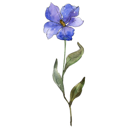 Blue purple flax floral botanical flower. Wild spring leaf wildflower isolated. Watercolor background illustration set. Watercolour drawing fashion aquarelle. Isolated flax illustration element.