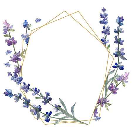 Purple lavender. Floral botanical flower. Wild spring leaf wildflower isolated. Watercolor background illustration set. Watercolour drawing fashion aquarelle isolated. Frame border ornament square.