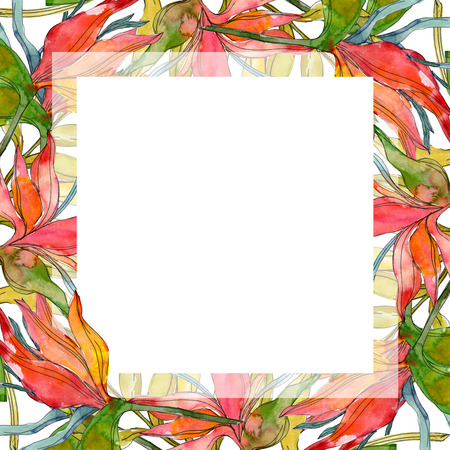 Tropical floral botanical flowers. Exotic plant leaf isolated. Watercolor background illustration set. Watercolour drawing fashion aquarelle isolated. Frame border ornament square. Stok Fotoğraf
