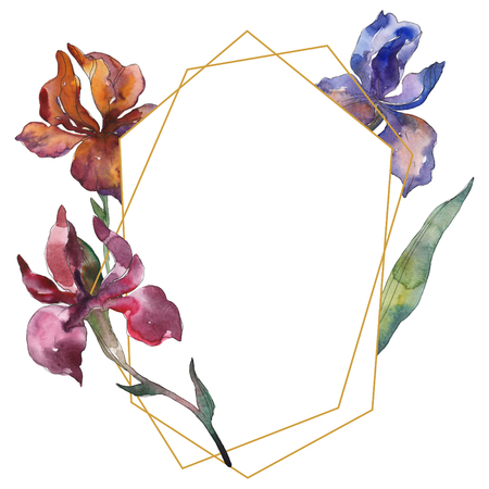 Purplr ahd red irises floral botanical flower. Wild spring leaf wildflower. Watercolor background illustration set. Watercolour drawing fashion aquarelle isolated. Frame border ornament square.