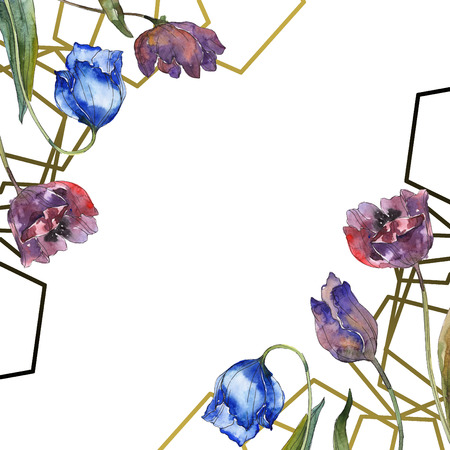 Purple and blue tulip floral botanical flower. Wild spring leaf wildflower isolated. Watercolor background illustration set. Watercolour drawing fashion aquarelle. Frame border ornament square.