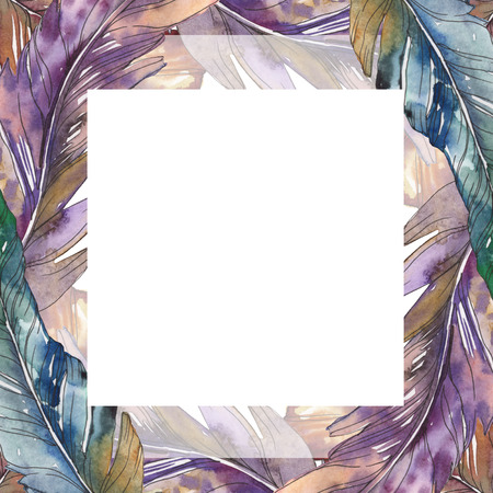 Bird feather from wing isolated. Watercolor background illustration set. Watercolour drawing fashion aquarelle isolated. Frame border ornament square.