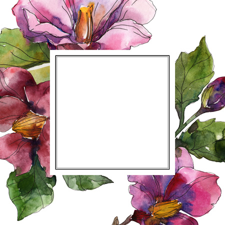 Red purple camelia floral botanical flower. Wild spring leaf wildflower isolated. Watercolor background illustration set. Watercolour drawing fashion aquarelle. Frame border ornament square.