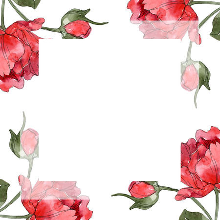 Red peony floral botanical flower. Wild spring leaf wildflower isolated. Watercolor background illustration set. Watercolour drawing fashion aquarelle isolated. Frame border ornament square. Banque d'images - 117583631